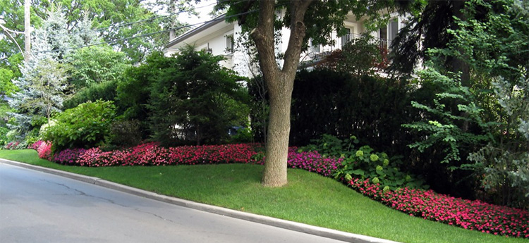 estate lawn care services in toronto